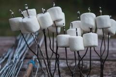 marshmallow-0454-1600x-sqshd